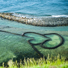 澎湖看海去